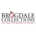 Brogdale Collections Strawberry Fair
