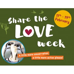 share-the-love-week-blog
