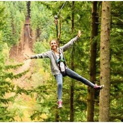 Go Ape Crawley Tilgate Park Places To Visit What To