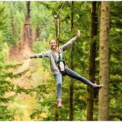 Go Ape Haldon Forest Park Places To Visit What To Do