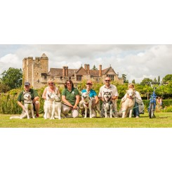 Castle Gardens Dog Rescue