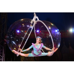 Moscow State Circus globe2