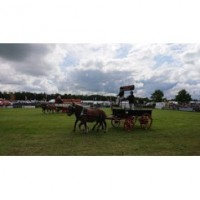Newbury Showground