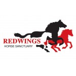 Redwings Horse Sanctuary - Mountains Visitor Centre