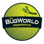 The BugWorld Experience