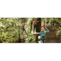 Treetop Trek Ripon