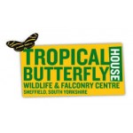 Tropical Butterfly House, Wildlife and Falconry Centre
